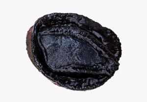 Wild-Abalone