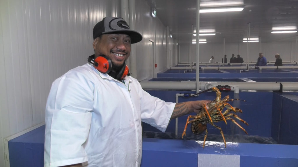 Moana New Zealand opens next generation lobster plant