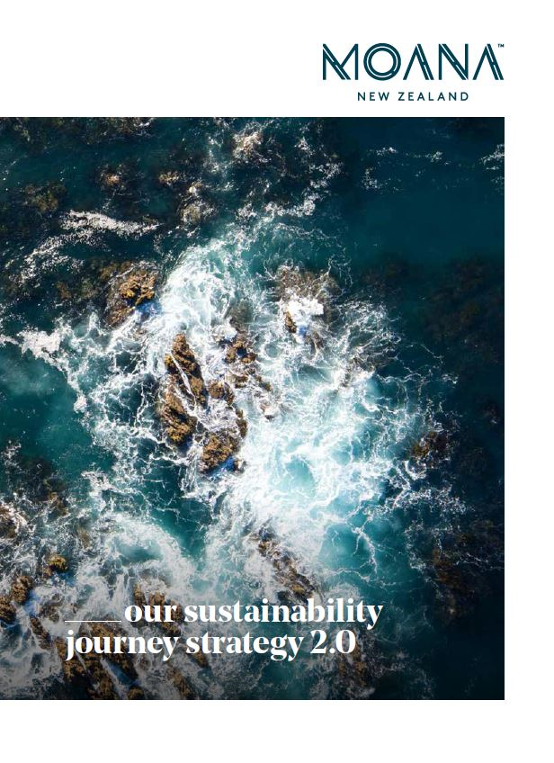 Our sustainability journey strategy 2.0